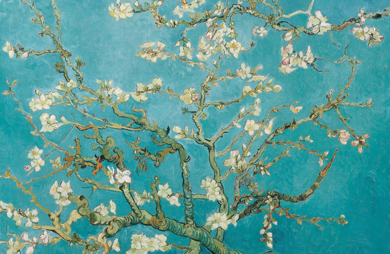Puzzel Vincent van Gogh: 'Amandelbloesem'